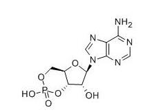 Adenosine Cyclophosphate