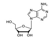 Adenosine USP30