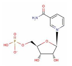 бета - никотиновая мононуклеотидная кислота